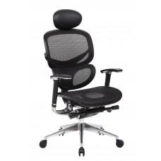 Multi-Function Mesh Chair W/ Head Rest