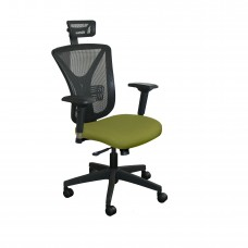 Executive Mesh Chair with Fennel Fabric with Black Base and Headrest