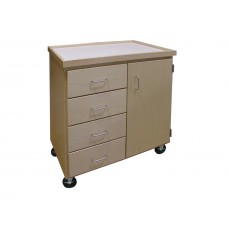 Mobile Art Storage Cabinet