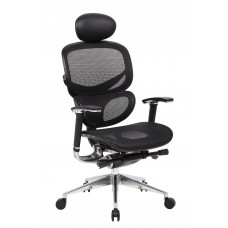 Multi-Function Mesh Chair W/ Head Rest