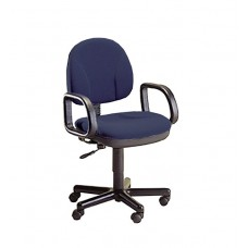 Chair Task Horizon Seating Steno Chair Specify Color