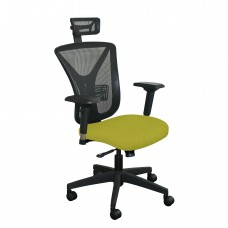 Executive Mesh Chair with Lime Fabric with Black Base and Headrest